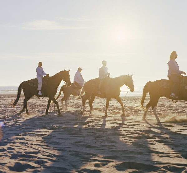 Horse riding trips North Devon woolacombe